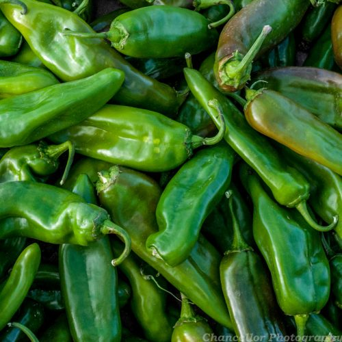 Fresh New Mexico Green Chile